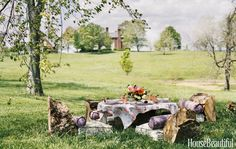 Logs from fallen trees form the chair backs for an outdoor brunch by Alex Mason…