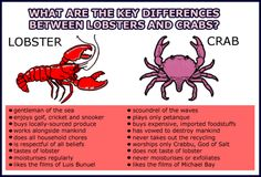 IMPORTANT INFORMATION    What are the key differences between lobsters and crabs? Reminds me of EVERY political post!!