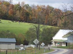 Charm, Ohio. Amish country in my neck of the woods