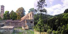 calw-historia-naturaleza-alemania