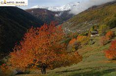 Val di Rabbi,Trentino.