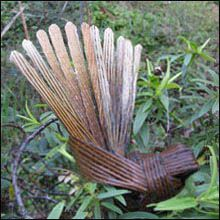 Flax Fantail from the talented Ali Brown...it looks so realistic!