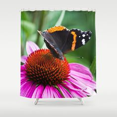 Red Admiral Butterfly Shower Curtain by Photography By MsJudi - $68.00