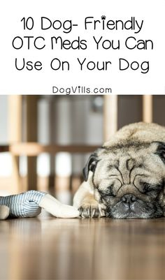 Keep this list of 10 dog-friendly OTC meds that you can use for your dog handy for the next time Fido is under the weather. Just remember to check with your vet first!
