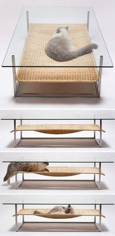 Japanese designers Koichi Futatsumata + Partners of Case-Real tap into this seemingly universal feline impulse with a creative combination facilitating both cat naps and coffee klatsches. | Tiny Homes