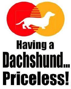 Dachshund are Priceless! Dachshund Funny, Dachshund Art, Daschund, Dachshund Tattoo, I Love Dogs, Puppy Love, Cute Dogs, Weenie Dogs, Doggies