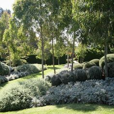 Make the most of our rich native flora and fauna with these Australian native garden design ideas brought to you by Australian Outdoor Living. Acreage Landscaping, Modern Landscaping, Landscaping Plants, Landscaping Ideas, Landscaping Software, Landscaping Company, Australian Garden Design, Australian Native Garden, Australian Farm