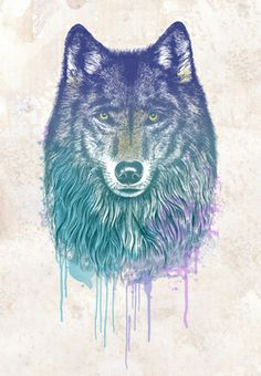 wolf, my spirit animal. if i were to be reincarnated i dream to be a majestic wolf