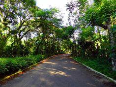 Ubatuba SP - Brazilian paradise.