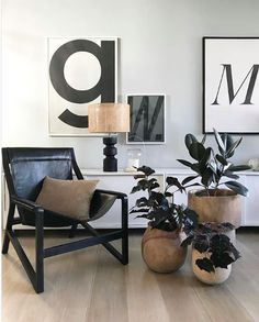 Here are 10 of my favorite low-maintenance indoor plants that look stunning against the backdrop of a modern, minimalist home. Low Maintenance Indoor Plants, Buy Cactus, Best Indoor Plants, Minimal Home, Modern Planters, Minimalist Interior, Plant Design, Plant Decor, Interior Styling