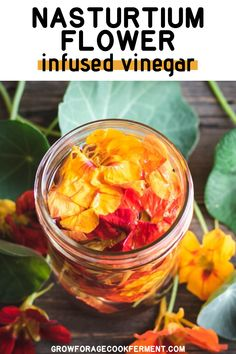 Nasturtium Flower Infused Vinegar: When you have nasturtiums growing in your garden make this nasturtium flower infused vinegar! It has a gorgeous color and peppery flavor and can be used to make a wonderful and nutritious salad dressing. Cold Summer Dinners, Refreshing Summer Cocktails, Fermentation Recipes, White Balsamic Vinegar, Iced Tea Recipes, Flower Food, Wild Edibles, Healing Herbs, Edible Flowers