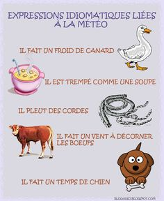 To Learn French Children French Expressions, French Language Lessons, French Language Learning, French Lessons, French Teaching Resources, Teaching French, Learning Resources, French Phrases, French Words