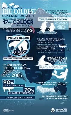 G Adventures illustrates some fun facts about Antarctica for the Looptail's Antarctica week. Antarctica is a very special place unspoiled by humans. This infographic highlights wildlife and environmental facts. Les Continents, World Geography, Equador, Marine Biology, Thinking Day, G Adventures, Travel Inspiration, Fun Facts, Around The Worlds