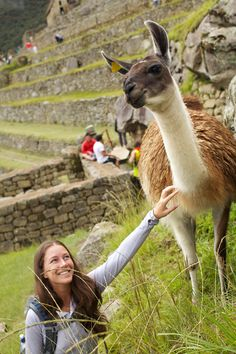 Perhaps the most important find of modern times, certainly the most popular, remains the sacred city of Machu Picchu. Founded in 1450, this UNESCO World Heritage Site draws countless seekers annually who've seen the inspiring photographs or heard the tales. Simply put, the place is divine. http://worldspree.com/southamericatours/peru-tours.aspx