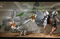 Harvey Nichols Window Display, Dubai clever