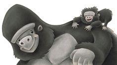 Gorillas by Aaron Zenz
