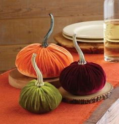 Nothing says Fall like a basket of pumpkins on the hearth or on the kitchen table. There is so much to like about pumpkins. They are easy on the budget, an amazing color and they come in all shapes...