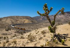 RailPictures.Net Photo: BNSF 6629 BNSF Railway GE ES44C4 at Warren, California by Mathieu Tremblay