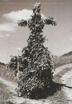 """The """"Maimann"""" (Mayman). The tradition of """"Pfingsthltäg"""", or Greenman's Day, is still going strong in small enclaves in the hinterlands of rural Germany...... cont. at the link."""