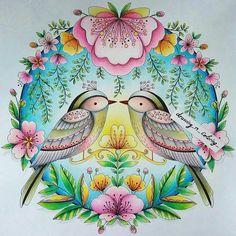 Que perfeição  @Regrann from @drawing_n_coloring_  @coloring_sistahs #coloringsistahsproject #coloringsistahs #coloringbook #livredecoloriage #jardinsecret #secretgarden #coloring #coloriage #colouringbook #beautifulcoloring #majesticcoloring #bayan_boyan #secretforestocean #desenhoscolorir #artecomoterapia #selvamagicaoficial #magicaljunglebooks #divasdasartes #joyousbloomstocolor #elerifowlerillustrator #elerifowler #joyousbloomscoloring #desenhoscolorir