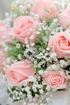 pink roses with baby's breath - Google Search