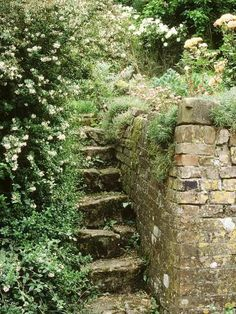 Garden Design Stone Steps, Beside Old Brick Wall-Jacqui Hurst-Photographic Print - Design Jardin, Garden Design, Old Brick Wall, Sloped Garden, Cottage In The Woods, Old Bricks, Nature Aesthetic, Garden Cottage, Small Cottage Garden Ideas