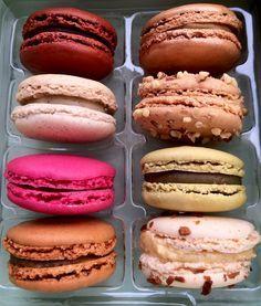 Damyel Macarons in P  Mein Blog >> #tumblr