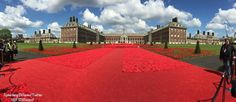 Handmade Poppy Exhibit At The Chelsea Flower Show, May 23, 2016.
