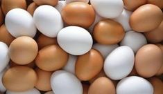 Egg Diet for Weight Loss - See how to lose weight with boiled eggs diet plan in breakfast, lunch and dinner. Boiled Egg Diet, Boiled Eggs, Hard Boiled, Dieet Plan, Food To Gain Muscle, Build Muscle, Muscle Diet, Get Healthy, Healthy Recipes