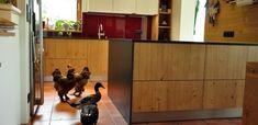 Tierliebe in unseren Küchen Buffet, Cabinet, Storage, Furniture, Home Decor, Made To Measure Furniture, Custom Kitchens, Carpentry, Home Architect