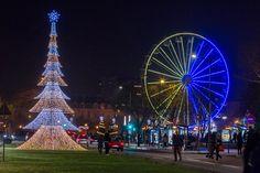 #SoleilsdHiver L'occasion d'un parcours dans la ville d'#Angers pour découvrir les illuminations, comme le grand sapin du boulevard Foch. (Photo: Thierry Bonnet/Ville d'Angers)
