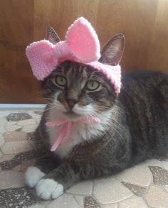 This adorable hand-knit makes any cat look precious! This hat is lightweight and is easily worn by average sized cats and small dogs. A great