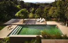 Now thats a proper pool and deck. Pool / Bridle Road Residence in Cape Town, South Africa Moderne Pools, Outdoor Patio Designs, Outdoor Pool, Backyard Patio, Outdoor Spaces, Outdoor Seating, Indoor Outdoor, Natural Swimming Pools, Swimming Pool Designs