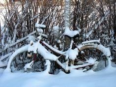 -567- Schneeeinbruch -  onset of snow - Schleswig - Minimal Art - 7/9