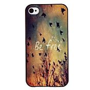 Free Birds Coloured Drawing Pattern Black Fra... – USD $ 2.44