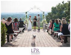 wickham park wedding  Lynnereznickphotography.com