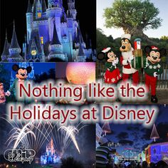 Do you agree there is nothing like the holidays at Disney?