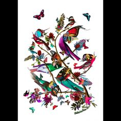 Tolf Fuglar, is one of the latest affordable art prints from Kristjana S Williams. The art print features a beautiful collage of bright and vibrant butterflies and birds in Williams' signature style. Most recently commissioned by Britain's Victoria and Albert Museum to create several large scale murals, Kristjana S. Williams is one of the world's hottest emerging artists. The Tolf Fuglar art print is a limited edition print, signed and numbered by the artist and available in two sizes…