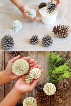 "Easiest 5 Minute 'Bleached Pinecones' {without Bleach!} Make beautiful ""bleached pinecones"" in 5 minutes without bleach! Non-toxic & easy DIY pine cone craft, perfect for fall, winter, Thanksgiving & Christmas decorations! – A Piece of Rainbow Diy And Crafts Sewing, Easy Diy Crafts, Fall Crafts, Holiday Crafts, Decor Crafts, Kids Crafts, Art Decor, Pine Cone Art, Pine Cone Crafts"