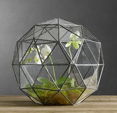 Just found this Geodesic Terrarium at Restauration Hardware