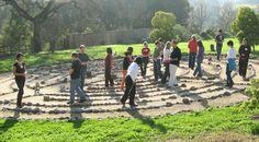 Rockwood:Building powerful, interconnected, collaborative leadership.  Oakland.  Fellowships.