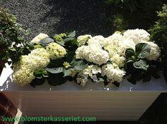 Tips & råd til blomsterkasser