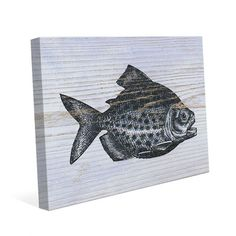 """Click Wall Art Rustic Piranha Ocean Blue Graphic Art on Wrapped Canvas Size: 20"""" H x 30"""" W x 1.5"""" D"""