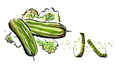 https://2.bp.blogspot.com/-STv9lvb7T9I/V3wN7hLH0BI/AAAAAAAAcis/MBRPKEsIHV80SZ0QxS59hToFSQcsIfGJQCLcB/s1600/cucumber-vegetable-illustration-clipart.jpg