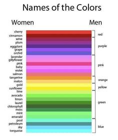 The Difference Between Men and Women. Is this true?