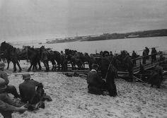 Fuerzas alemanas con sus provisiones en el cruce de un río camino al frente. Unión Soviética, octubre de 1941.