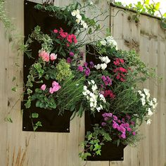 Cheap wall planter, Buy Quality garden wall planters directly from China vertical wall garden planters Suppliers: 4 Pocket Hanging Vertical Garden Wall Planter - for herbs lettuce flowers ferns planting bag wall 4 strawberry grow bag Garden Wall Planter, Living Wall Planter, Vertical Garden Planters, Wall Planters, Balcony Garden, Patio Wall, Outdoor Planters, Garden Plants, Hanging Flower Pots