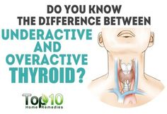 difference between underactive and overactive thyroid Thyroid Causes, Types Of Thyroid, Thyroid Levels, Thyroid Hormone, Thyroid Disease, Thyroid Health, Symptoms Of Overactive Thyroid, Home Remedies For Arthritis, Top 10 Home Remedies