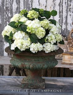 Green Cast Iron Round Urn with hydrangea