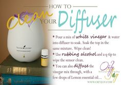 Do you run your diffuser chock full of various potent drops of essential oils pretty much every day and every night? I know I do… Young Living's ultrasonic home diffusers are a fabulous…